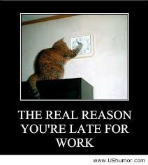 Funny Motivational Quotes Work Awesome BFunny Motivational Quotes About Work Funny