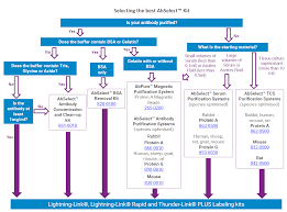 Abselect Decision Making Diagram Expedeon