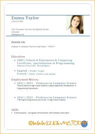 Cv Resume Sample Pdf Job Resume Template Example Of A Resume For A