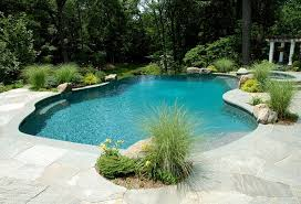 Image Pool Maintenance Pinterest Environmentally Friendly Pool Design Natural Swimming Pool