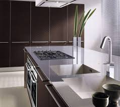 Stainless Steel Kitchen Designs 15 Kitchen Designs With Stainless Steel Countertops Kitchen