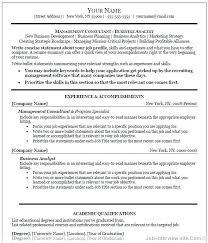 Exquisite Decoration Hybrid Resume Template Combination Resume