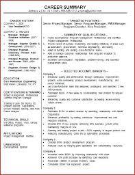 Resume Career Summary Awesome Resume Professional Summary Examples Sample Career Summary City Co