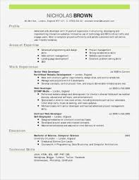 Basic Resume Template14 Free Templates Download Attractive Creative