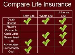 Term Life Quote Stunning Term Life Insurance Quote Comparison Impressive Best 48 Compare Life
