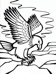 Free Printable Bald Eagle Coloring Pages For Kids School Bird
