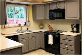 Rustoleum Kitchen Cabinet Paint Kitchen Cabinets Kit Quicuacom