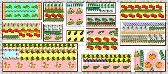 Small Picture Vegetable Garden Plan Elegant Small Vegetable Garden Plans Ideas