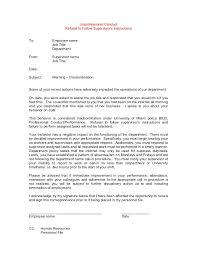 Employee Warning Letter Insubordination New Company Driver