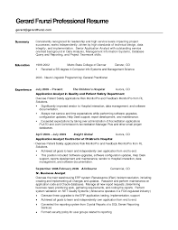 Resume Summery Free Resume Example And Writing Download