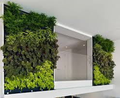 Small Picture Modren Indoor Vertical Garden At The Kafd Conference Center To