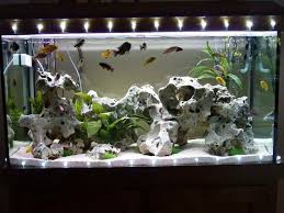 delightful aquarium coffee table diy home accessories cool aquarium decorations decor aquariums small fish tanks
