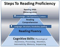 reading skills essay reading skills essay gxart reading skills  reading skills essay gxart orgreading skills essaycritical evaluation of an essay