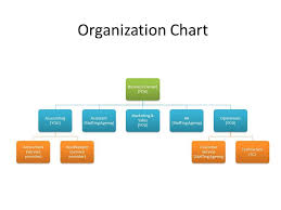 Small Business Organizational Structure Yahoo Image Search