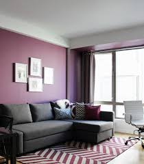 Rich use of color in this Contemporary Living Room. The purple walls and  purple rug