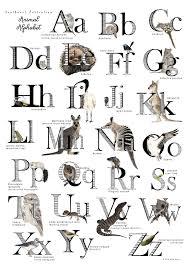Alphabet Chart Australia Southwest Australian Animal Alphabet Poster