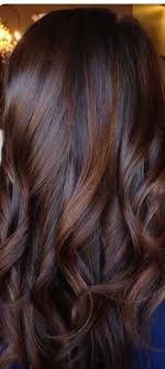 Rich Dark Brown With Red Tones