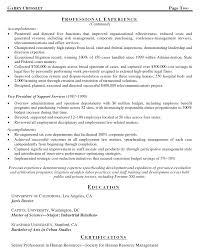 General Counsel Vp Resume General Counsel Vp Resume Sample