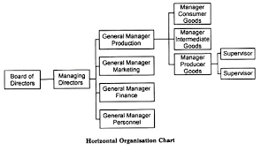 Organisation Chart Meaning Principle And Merits