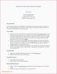 Credit Analyst Resume Resume Sample Business Analyst Credit Analyst Resume Unique Business
