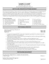 Professional Resume Layout Resume Layout Templates Professional ...