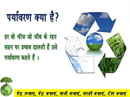 essays on environment conservation << essay writing service essays on environment conservation
