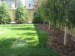 landscaping trees calgary backyard with x 768 266 kb jpeg x