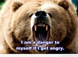 bear wallpaper with anger quote