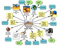 mindmaps directory page of  bubble diagram about photosynthesis bubble diagram about ozymandias analysis