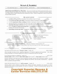Staff Internal Auditor Resume Professional Resume Templates