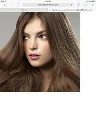 Neutral Burnett Hair