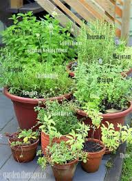 Balcony Herb Garden Designs U0026 Containers Ideas  Home InspirationsContainer Herb Garden Plans
