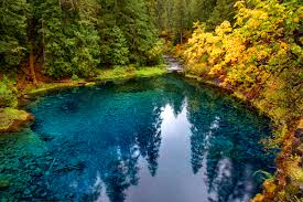 Image result for oregon photos