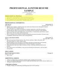 profile portion of resume resume profile examples nanny resume 8 free  sample example profile section of