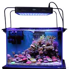 best aurora 165w reef led timer light with bracket legs sps lps led r aquarium chinese black box plus remote control under 133 67 dhgate com