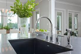 Blanco Kitchen Faucet Reviews Faucet Blanco Alta Kitchen Faucet Examples Blanco Alta Kitchen