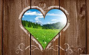 Nature Wallpaper Photo Love