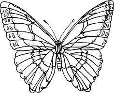 44 Fantastiche Immagini Su Farfalle Disegni Nel 2017 Disegni