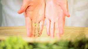 hands dropping cleansing spa bath salt into a natural wood bowl pouring clean water over it stock footage dissolve