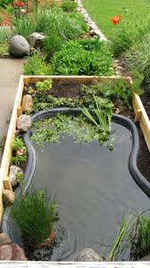 How To Avoid The Three Most Common Mistakes When Building A DIY Garden Pond