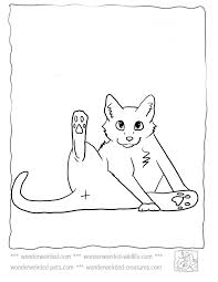 Small Picture Cat Coloring PageEchos Cat Coloring Pictures From Pet Coloring