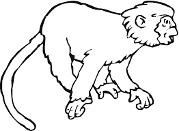 Small Picture Color Page Monkey Coloring Pages For Kids Printable Free Pippi