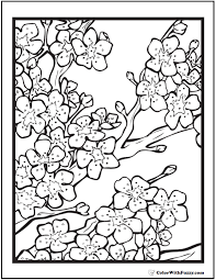 Small Picture 42 Adult Coloring Pages Customize Printable PDFs Cherry