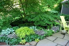 shade gardens design small shade garden ideas throughout garden design ideas for small shade gardens yns shade gardens design