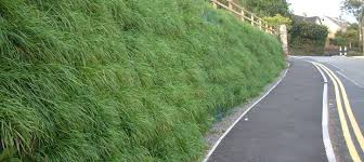 green faced retaining wall from abg geosynthetics