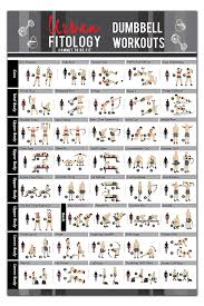 Dumbbell Exercises For Men Chart Buy Dumbbell Exercises Workout Poster Now Laminated Home