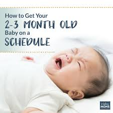 Sleep Pattern For 3 Month Old
