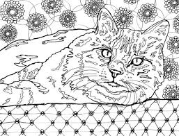 Small Picture Best Coloring Books for Cat Lovers Cleverpedia