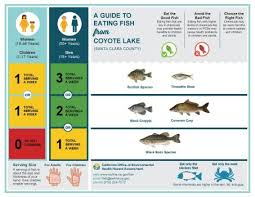 Mercury Levels In Fish Chart New Safety Guidelines Issued For Eating Coyote Lake Fish
