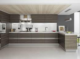 modern rta cabinets. Brilliant Rta Modern Rta Kitchen Cabinets Usa And Canada In Style New Inside C